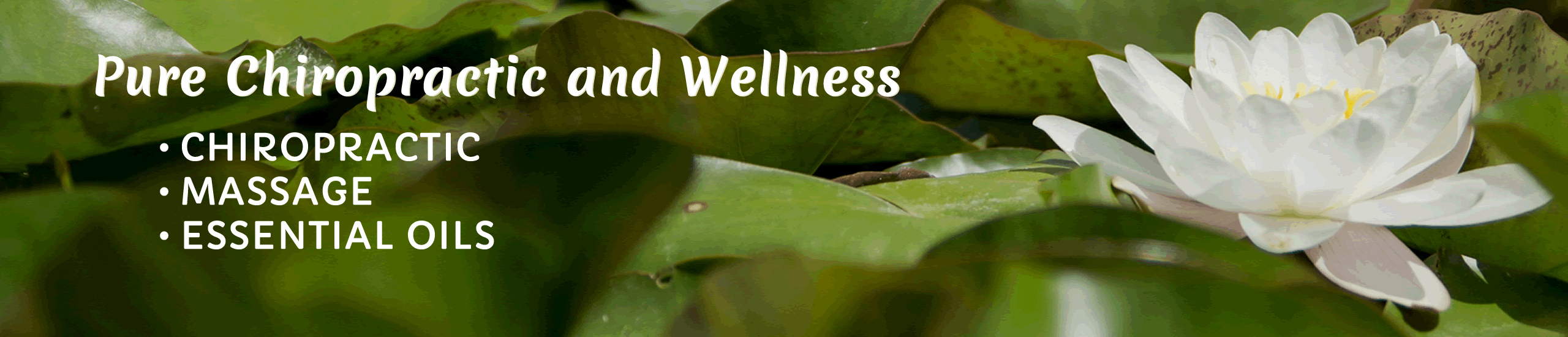Pure Chiropractic and Wellness